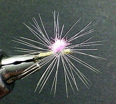 Feathercraft By フライ・タイイング 70匹目「ガガンボパラシュート」