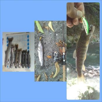 釣りパパ日記:小八賀川へ