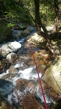 夏の渓流釣り