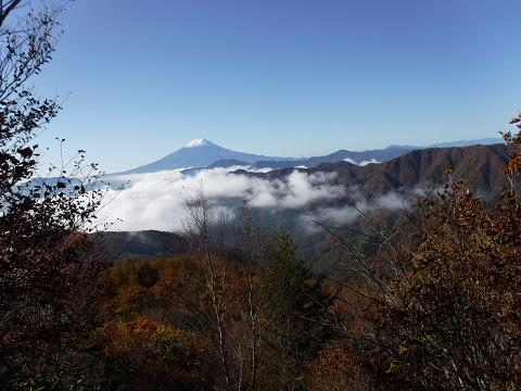山吹色の山歩2